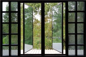 aluminium windows looking out to trees